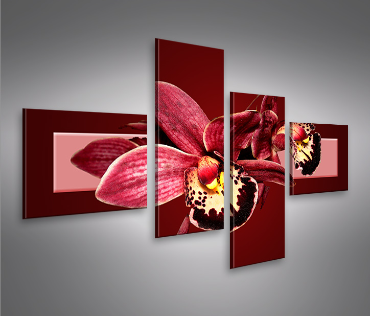 orchideen v3 4l bild auf leinwand bilder kunstdruck wandbild poster ebay. Black Bedroom Furniture Sets. Home Design Ideas