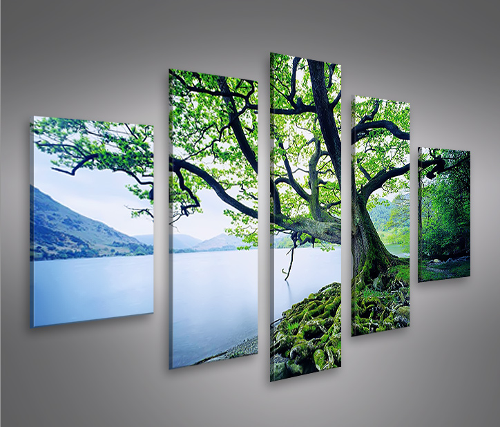 treelake mf bild auf leinwand bilder kunstdruck wandbild poster ebay. Black Bedroom Furniture Sets. Home Design Ideas