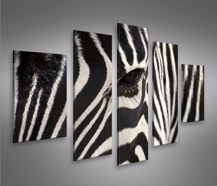 zebra v2 mf bild auf leinwand wandbild poster kunstdruck. Black Bedroom Furniture Sets. Home Design Ideas