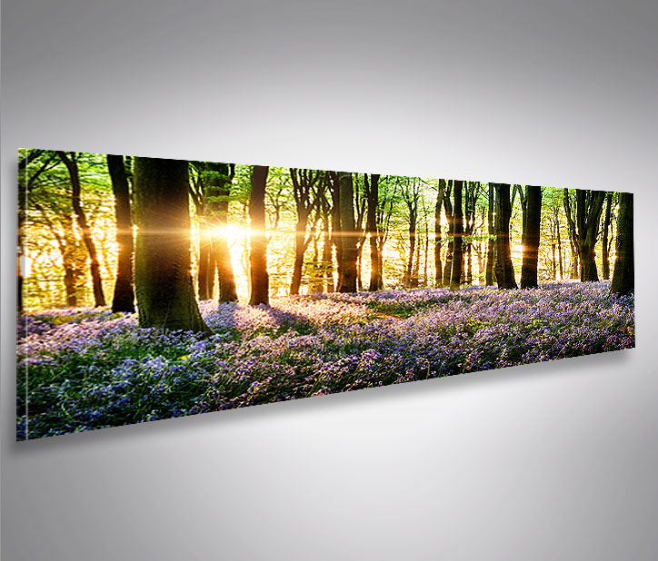 bild auf leinwand lavendel im wald panorama xxl poster leinwandbild wandbild ebay. Black Bedroom Furniture Sets. Home Design Ideas