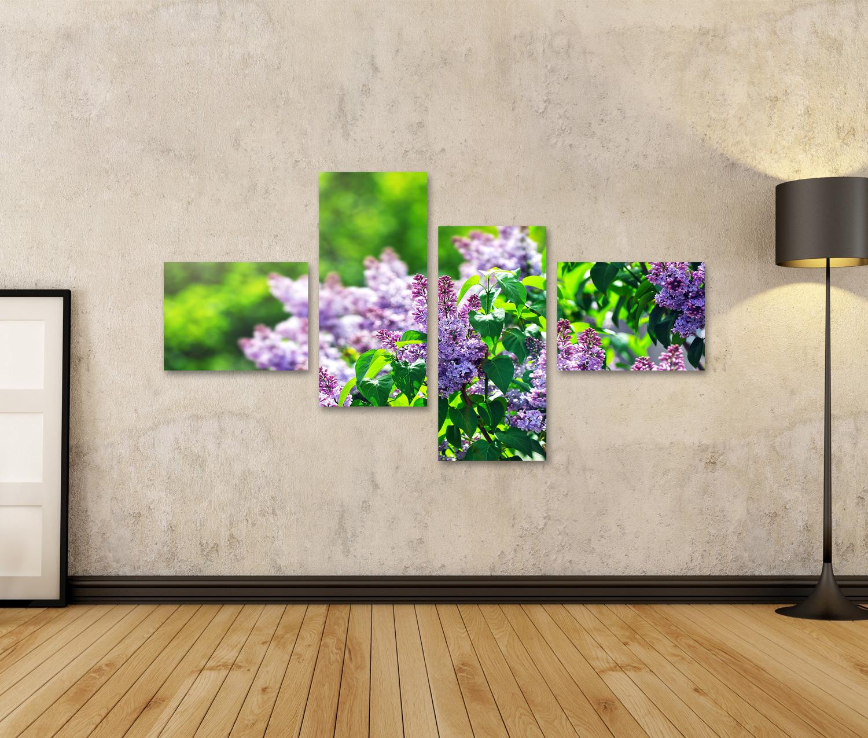 Bild Bilder auf Leinwand lila Fliederbusch der im Maitag blüht Stadt IZA